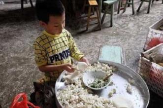 بالصور.. طفل صيني يصنع 10 آلاف زلابية في اليوم لإعانة أسرته الفقيرة - المواطن