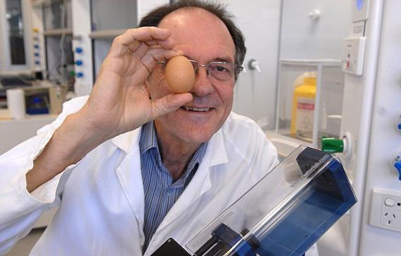عالم-استرالي-اختراع-اعاددة-بيضة