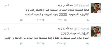 عبدالله بن زايد 0