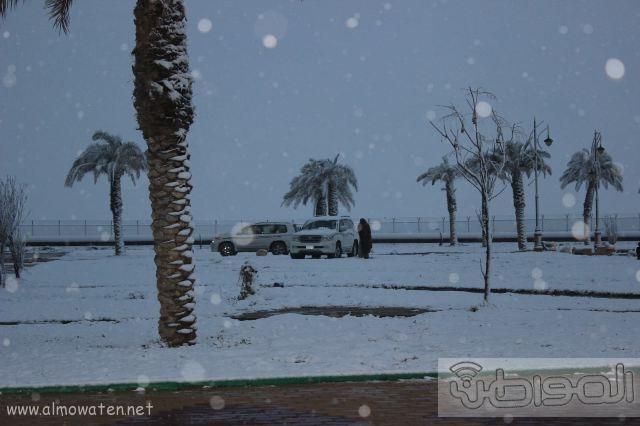 عدسة المواطن ترصد اكتساء #رفحاء بالبياض.. اليوم (39)