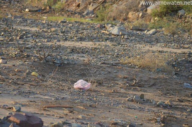 عدسة المواطن ترصد مقبرة بلا سور على طريق  جدة و مكة المكرمة (4)