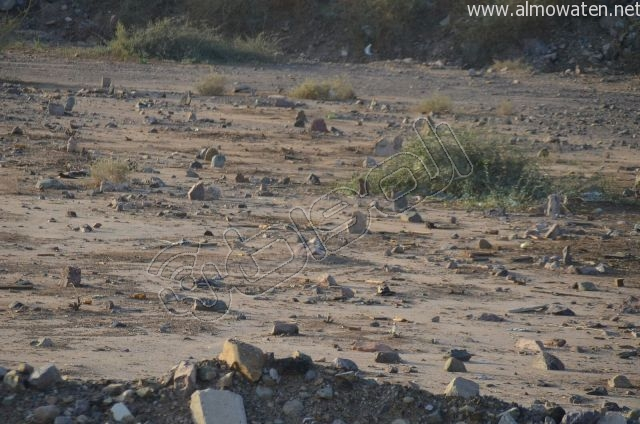 عدسة المواطن ترصد مقبرة بلا سور على طريق  جدة و مكة المكرمة (7)