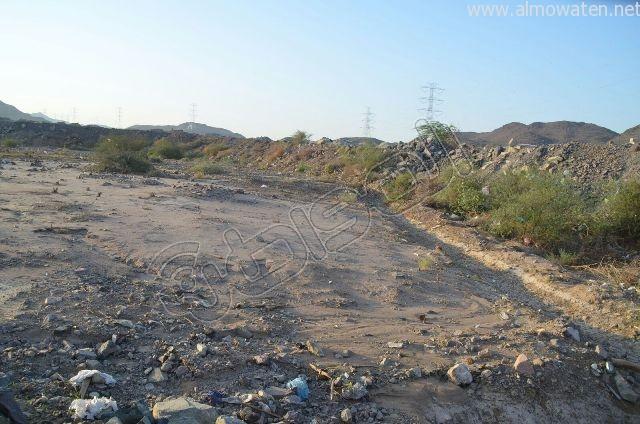 عدسة المواطن ترصد مقبرة بلا سور على طريق  جدة و مكة المكرمة (9)