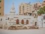 عروس البحر الاحمر جدة (11)