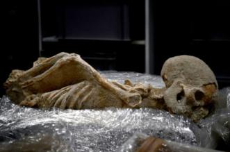 علماء آثار يونانيون يحققون في وفيات مريبة حصلت قبل 25 قرنا - المواطن