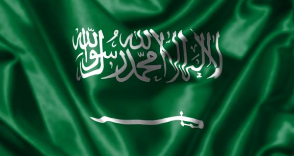 علم المملكة- السعوديه