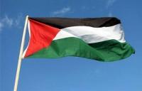 علم - فلسطين