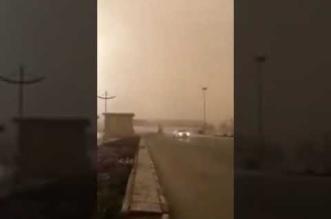 بالفيديو.. نجاة سائق بأعجوبة لحظة سقوط عمود إنارة بسبب الرياح - المواطن