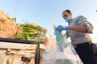 بالصور.. سحب عينات خضار وفاكهة من المزارع للكشف عن بقايا المبيدات - المواطن
