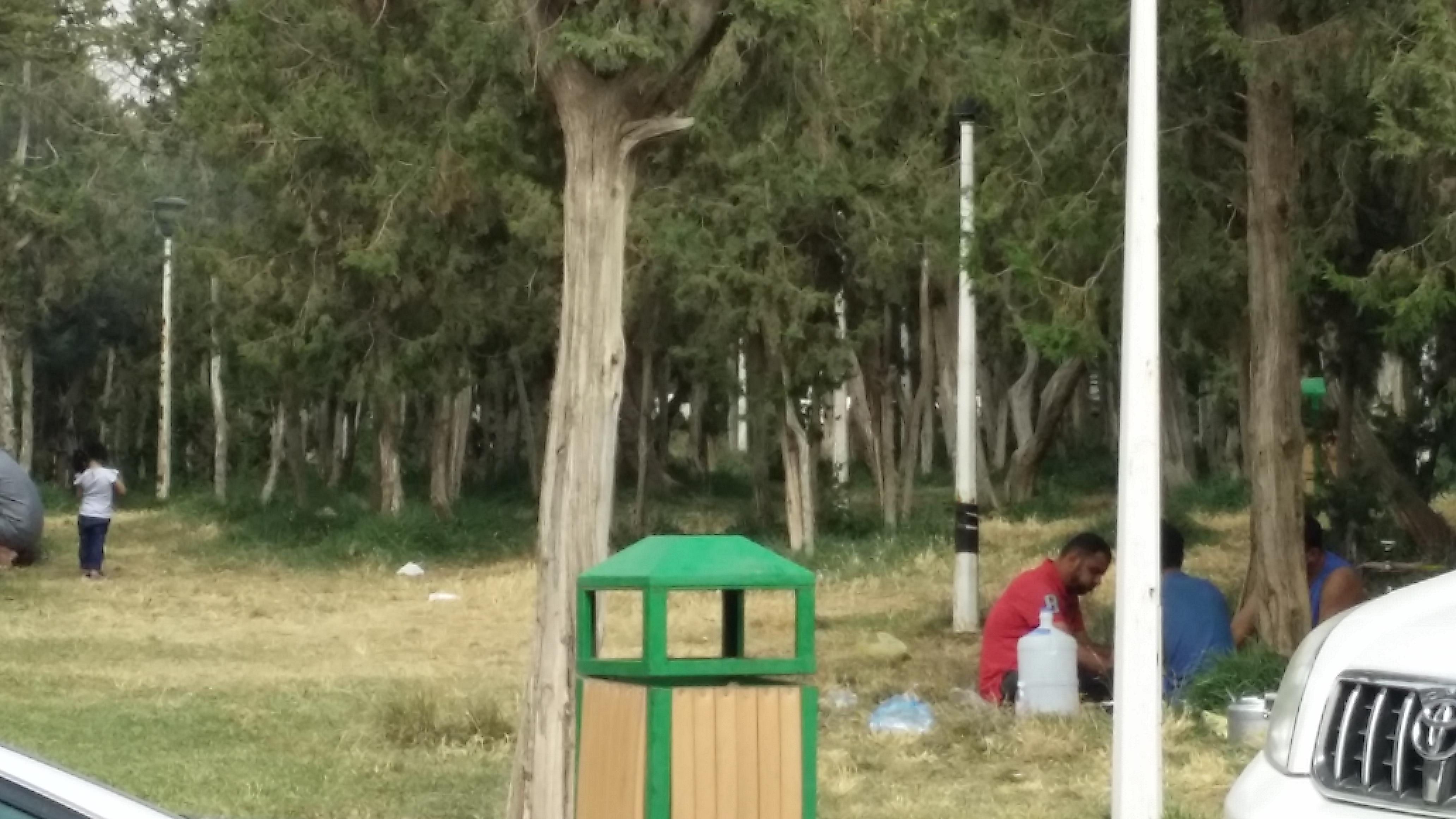 غابة رغدان الباحة (13)