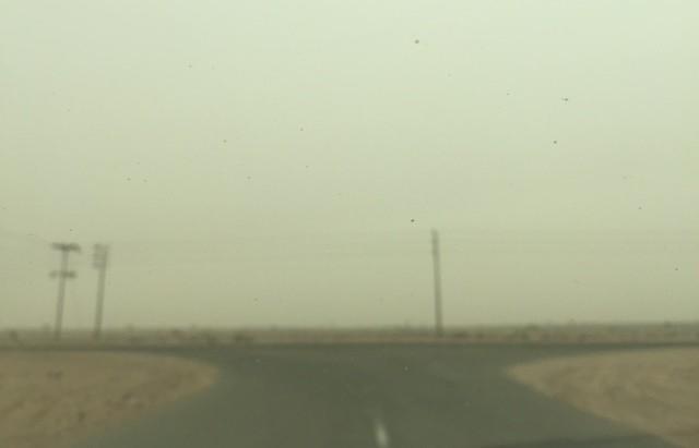 غبار-الطائف