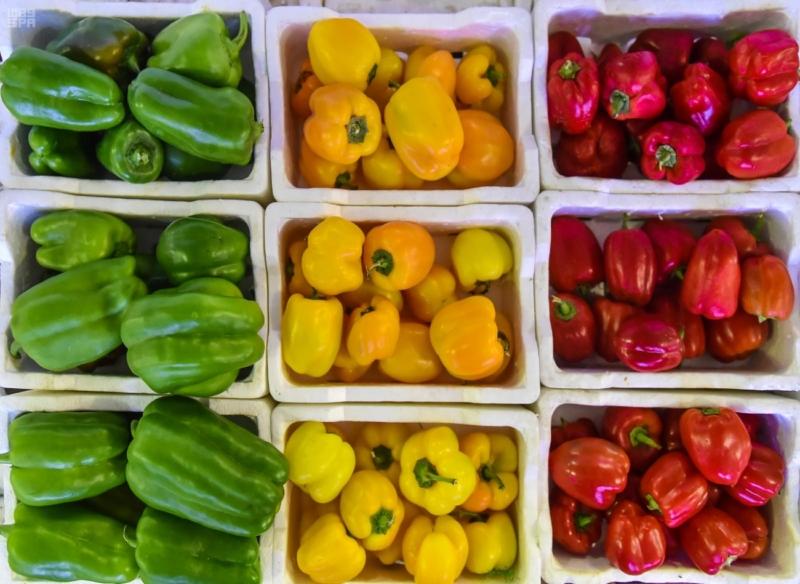 فاكهة الصيف (2)