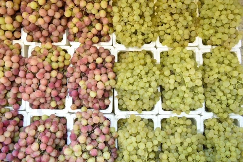 فاكهة الصيف (5)