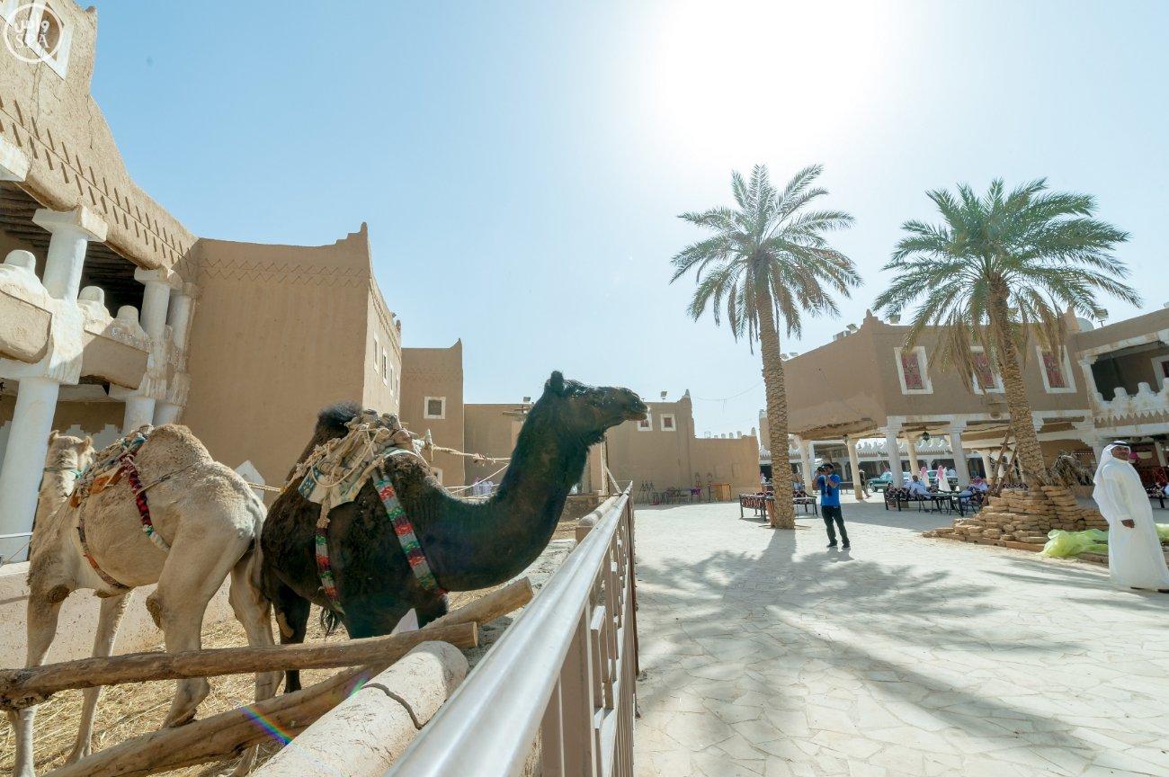 في يوم التراث العالمي.. #التراث_السعودي يشهد نقلة وتحولًا نوعيًا (1)