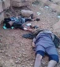 قتلى الحوثي 1