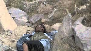 مقتل وأسر قيادات حوثية في دمت اليمنية - المواطن