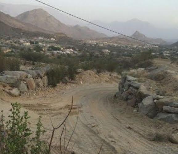 قرى سد عامر.jpg0