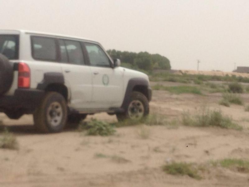 قرى قوز الجعافرة6