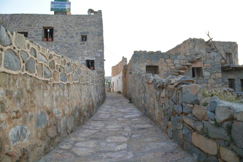 قرية آل عليان الأثرية.. مقبرة عكس اتجاه القبلة ومنازل أثرية (210696110) 