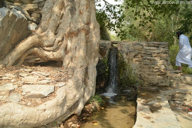 قرية-ذي-عين-التراثية (20)