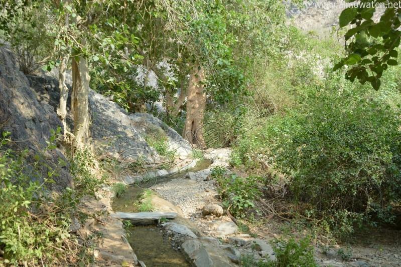 قرية-ذي-عين-التراثية (24)