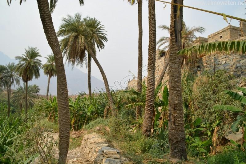 قرية-ذي-عين-التراثية (28)