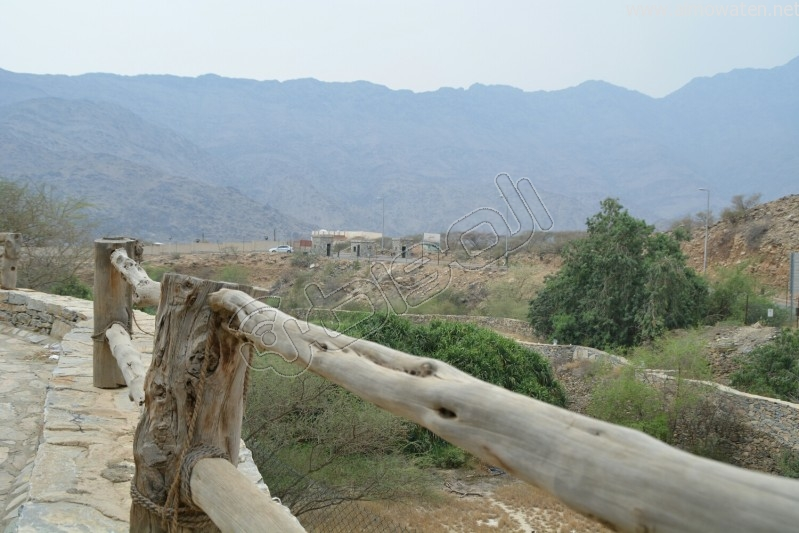 قرية-ذي-عين-التراثية (4)
