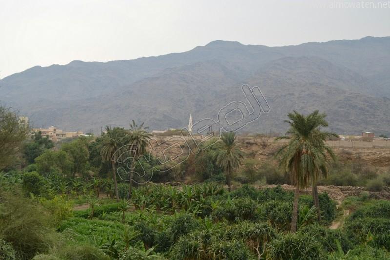 قرية-ذي-عين-التراثية (5)