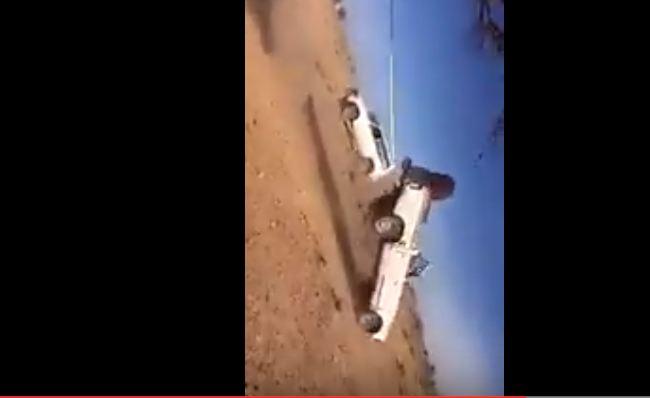 بالفيديو.. حاول قطع الشجر بسيارته فكانت الكارثة