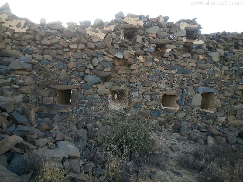 قلعة شمسان والدقل الكبرى التاريخية (1)