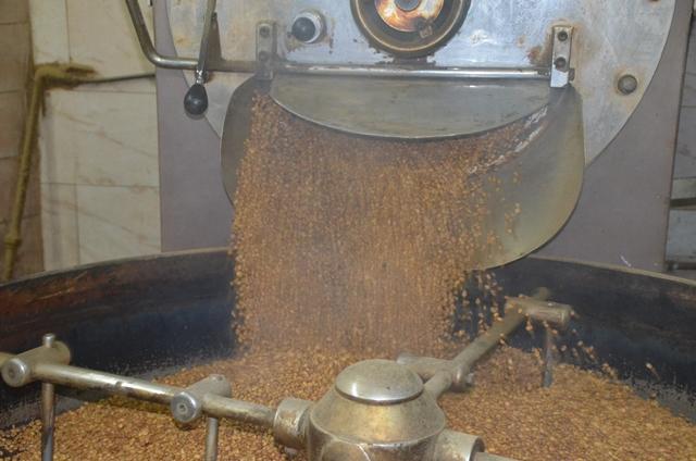 أخصائية تغذية: هذه فوائد وأضرار القهوة.. وحقيقة تعرضها للمبيدات