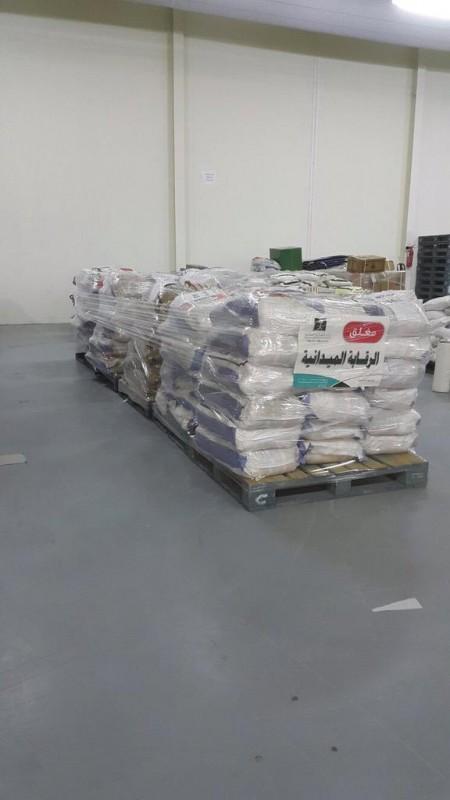 قوارض-الأرز (1)