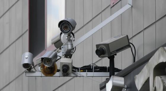 الجمارك ترد على إمكانية استيراد كاميرات المراقبة والطيور وقطع الكمبيوتر - المواطن