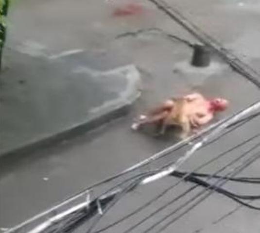 بالفيديو كلب يفترس شخصاً بالطريق وسط ذهول المارة