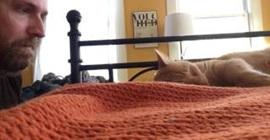 كيف انتقم رجل من قطته