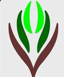 لجنة-التنمية-الاجتماعية-ببني-ظبيان-بمنطقة-الباحة