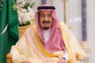 سلمان الحزم ومحمد العزم ينتصران للوطن والمواطن - المواطن