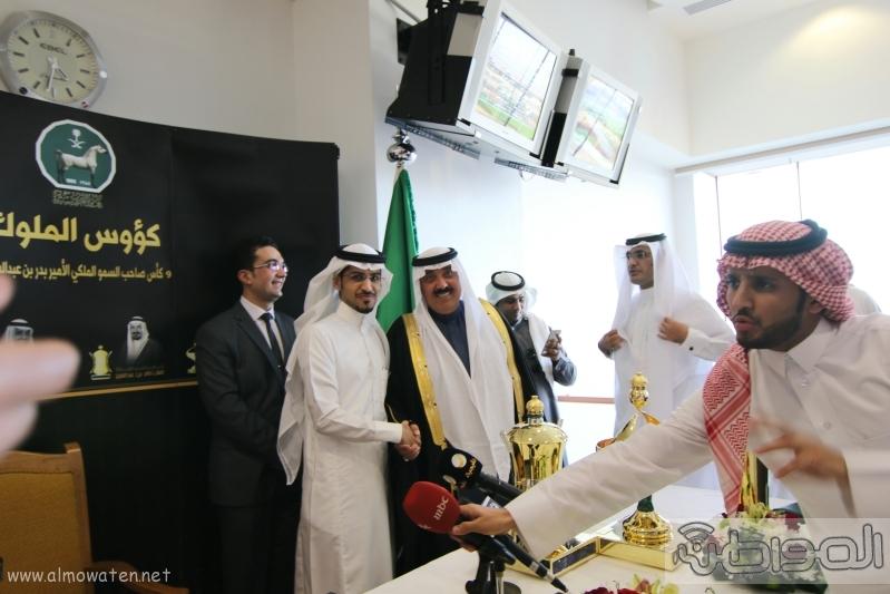 متعب بن عبدالله لـ المواطن  كؤوس الملوك والأمير بدر مخصصة لخيول الإنتاج 16
