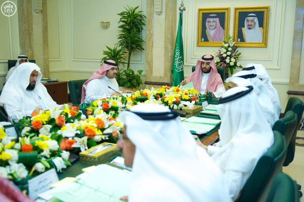 مجلس-الشؤون-الاقتصادية-والتنمية (1)