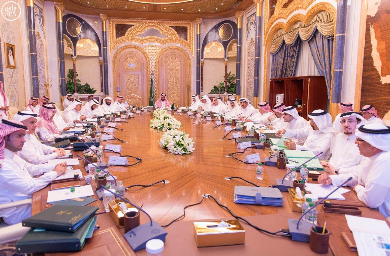 مجلس الشؤون الاقتصادية والتنمية (2)