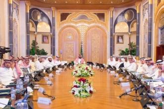 مجلس الشؤون الاقتصادية والتنمية يستعرض قياس أداء الأجهزة العامة للربع الثالث - المواطن