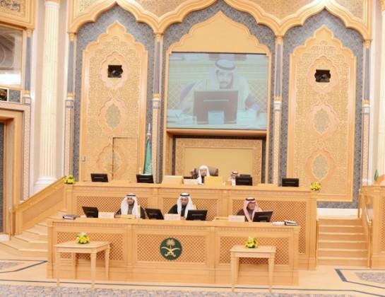 مجلس الشورى  (4)