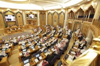 مجلس الشورى 7