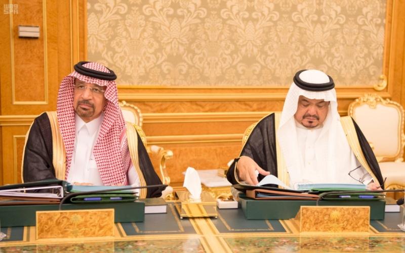 مجلس الوزراء يوافق على النظام الأساسي للمجلس الدولي للتمور 99