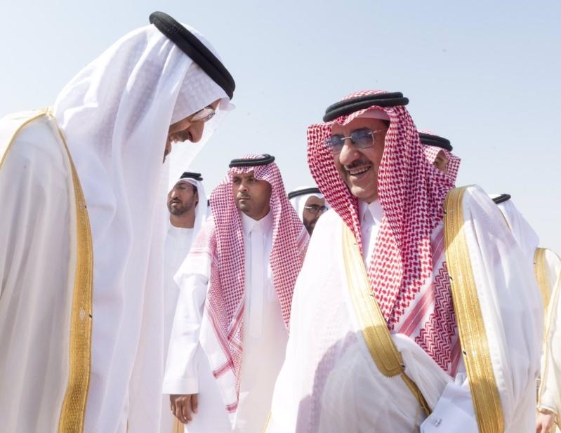 محمد بن زايد يصل الرياض2