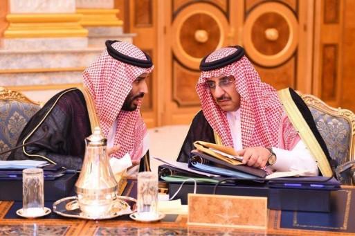 """كفاءة """"المحمدين"""" قادتهما لتولي مناصب مهمة في عهد حكومة الشباب"""