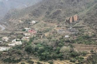 بعد وفاة منصور بن مقرن ومرافقيه .. هذه محمية ريدة التي شهدت الحادث الأليم - المواطن