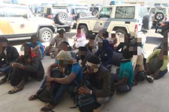 توقيف 1011 مخالفًا لأنظمة العمل والإقامة في الرياض - المواطن