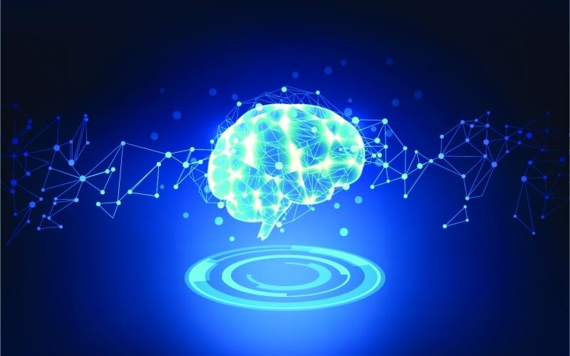 مخ الأنابيب من خلايا الجلد البشري بارقة أمل ضد الزهايمر - المواطن