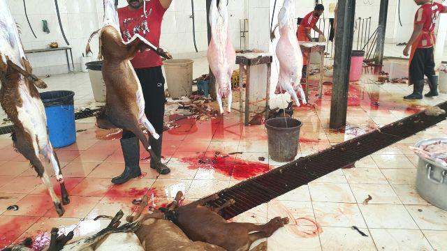 مذبح في بارق